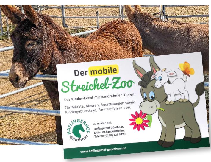 HaflingerHof_Werbeschild »Der mobile Streichelzoo«